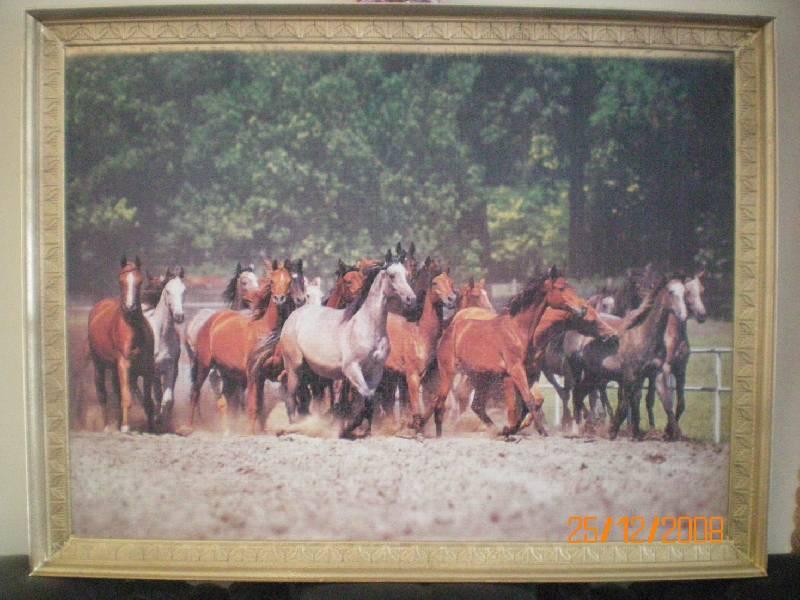 Иллюстрация 1 из 2 для Puzzle-2000.С-200177. Табун лошадей | Лабиринт - игрушки. Источник: Мухаметова Светлана Рафкатовна