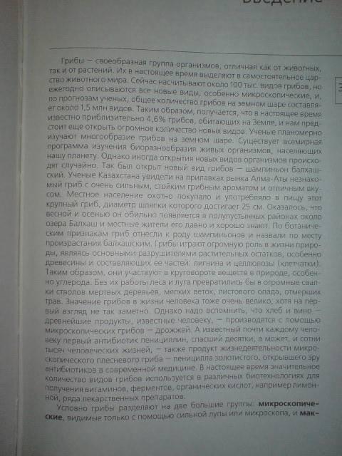 Иллюстрация 1 из 11 для Азбука грибника - Лидия Гарибова | Лабиринт - книги. Источник: Настёна