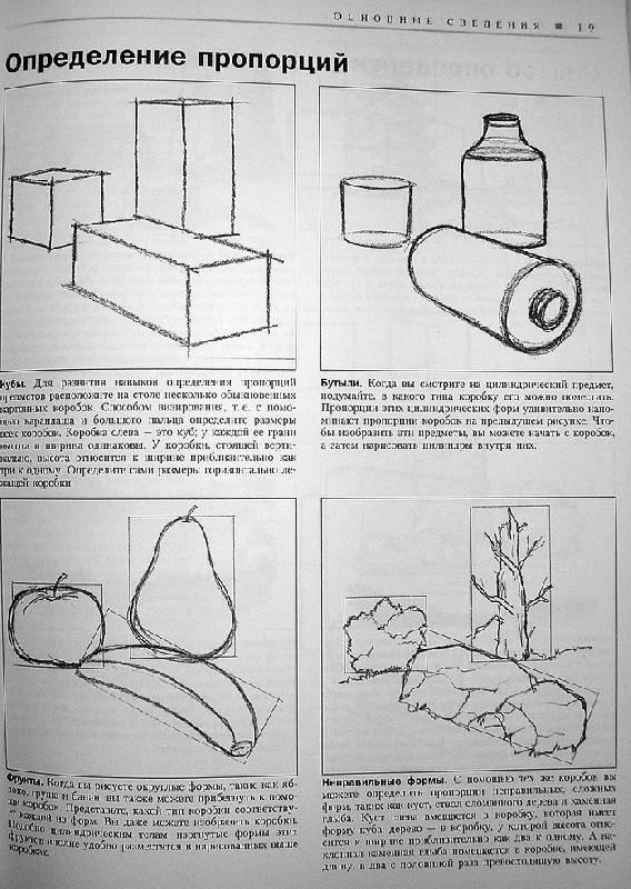 натюрморт карандашом для начинающих: