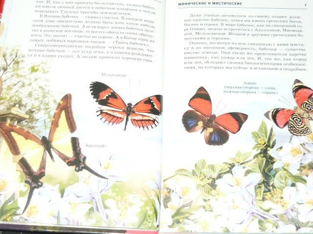 Иллюстрация 1 из 29 для Бабочки - Юлия Дунаева | Лабиринт - книги. Источник: Ромашка:-)