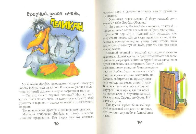 Иллюстрация 1 из 24 для Мама-кот, или История про кота, который научил чайку летать - Луис Сепульведа   Лабиринт - книги. Источник: Спанч Боб