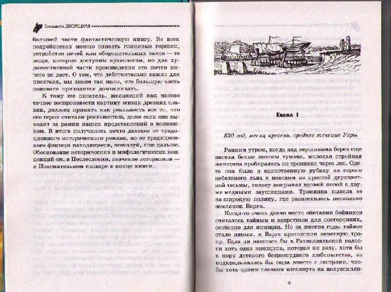 Иллюстрация 1 из 2 для Ночь богов-1: Гроза над полем - Елизавета Дворецкая   Лабиринт - книги. Источник: In@