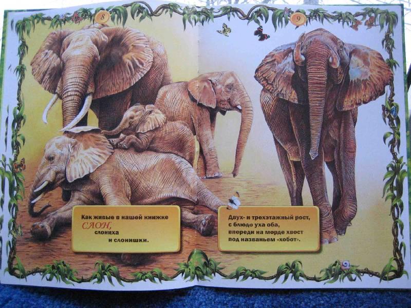 Иллюстрация 1 из 47 для Что ни страница, - то слон, то львица - Владимир Маяковский | Лабиринт - книги. Источник: Трухина Ирина