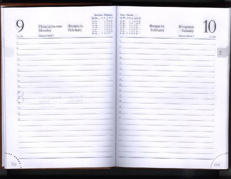 Иллюстрация 1 из 3 для Ежедневник карманный 2009 (79134072)   Лабиринт - канцтовы. Источник: Гартман Антон Владимирович.