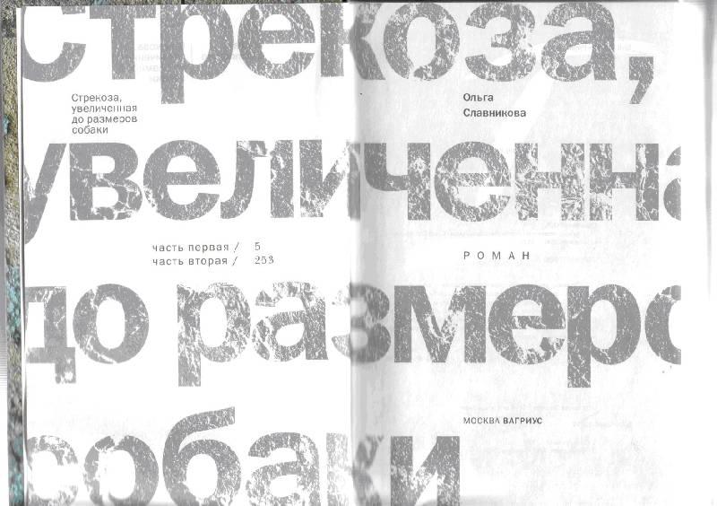 Иллюстрация 1 из 3 для Стрекоза, увеличенная до размеров собаки - Ольга Славникова | Лабиринт - книги. Источник: kitusha