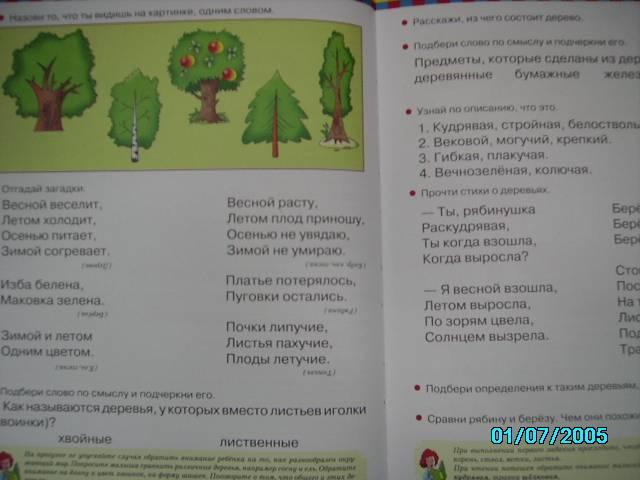 Иллюстрация 1 из 24 для Завтра в школу. Развитие речи - Эльвира Павленко | Лабиринт - книги. Источник: Звездочка