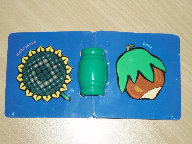 Иллюстрация 1 из 5 для Книжки с погремушками: Во саду ли в огороде | Лабиринт - книги. Источник: князева  юлия сергеевна