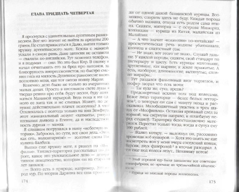 Иллюстрация 1 из 9 для Затмить Земфиру: Роман - Александр Малюгин | Лабиринт - книги. Источник: kitusha