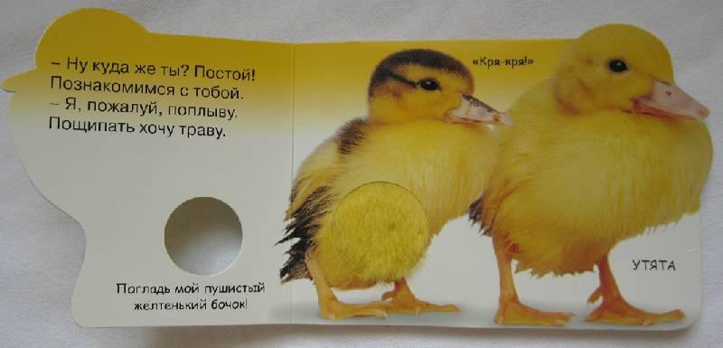 Иллюстрация 1 из 5 для Мамы и малыши (Погладь меня) | Лабиринт - книги. Источник: ne-pripevochka