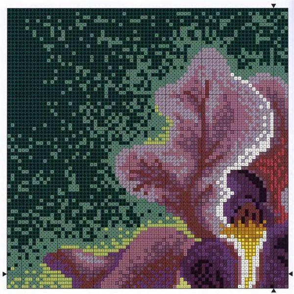 Источник. следующая. книги Цветы.  Альбом вышивки - Жозе Ахумада.  9. 8. 7. 1. Иллюстрация.  Юта. предыдущая.