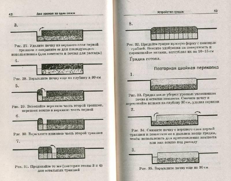 Иллюстрация 1 из 2 для Два урожая за один сезон - И. Кремнев   Лабиринт - книги. Источник: ТТ