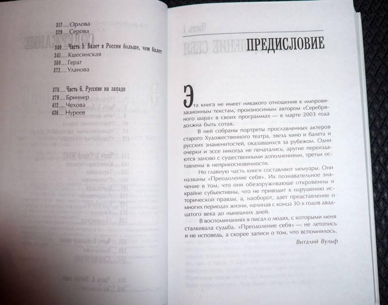Иллюстрация 1 из 16 для Серебряный шар - Виталий Вульф   Лабиринт - книги. Источник: Кнопа2