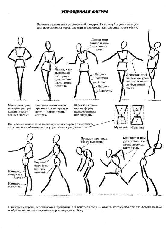 Как рисовать голову и фигуру человека хамм