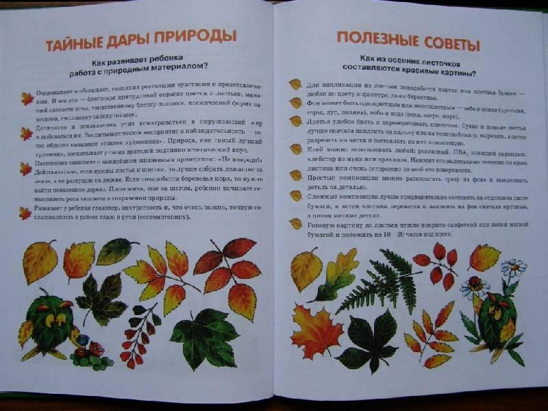 Иллюстрация 1 из 16 для Я собираю гербарий - Ирина Лыкова | Лабиринт - книги. Источник: Panty