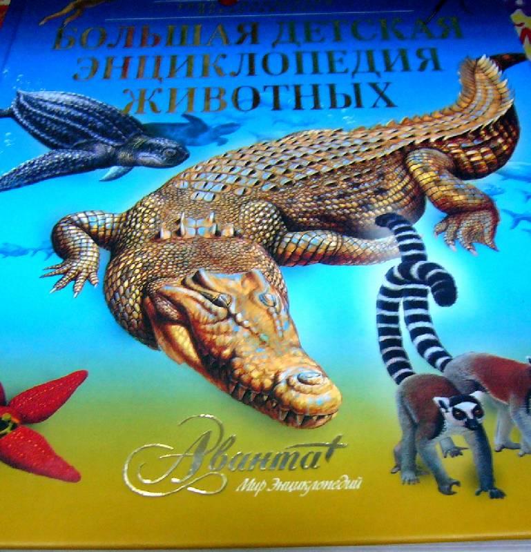 Иллюстрация 1 из 15 для Большая детская энциклопедия животных | Лабиринт - книги. Источник: Nika