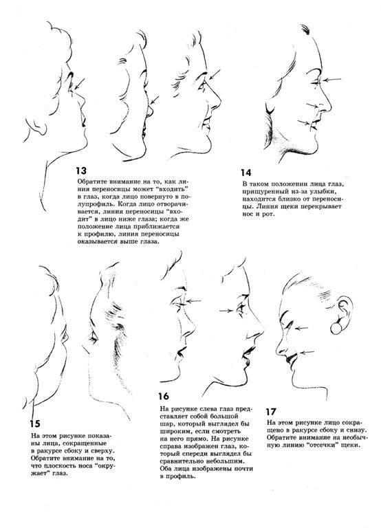 Как нарисовать винни пуха карандашом