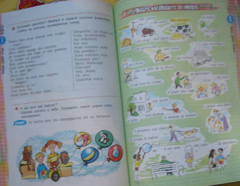 Решебник по Французскому языку Григорьева Горбачева Лисенко 10-11 Класс