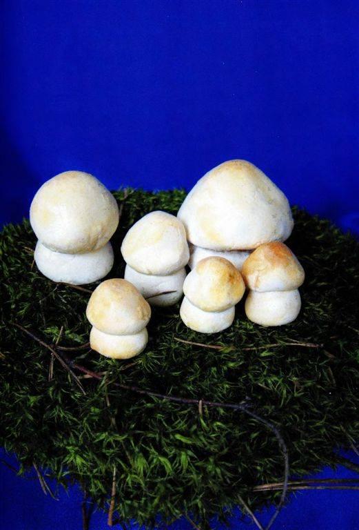 Соленые грибы как сделать