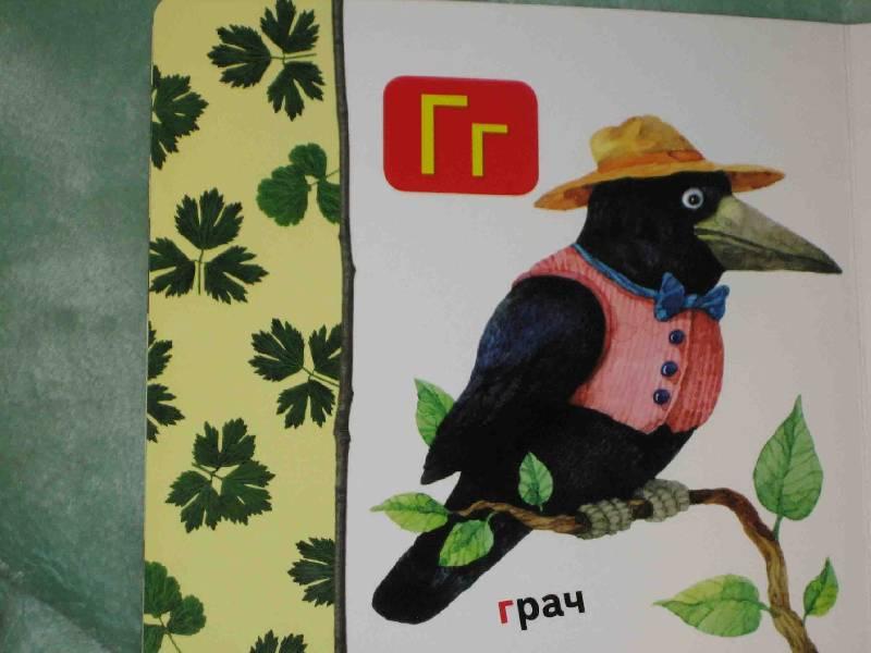 Иллюстрация 1 из 22 для Лесная азбука   Лабиринт - книги. Источник: Трухина Ирина
