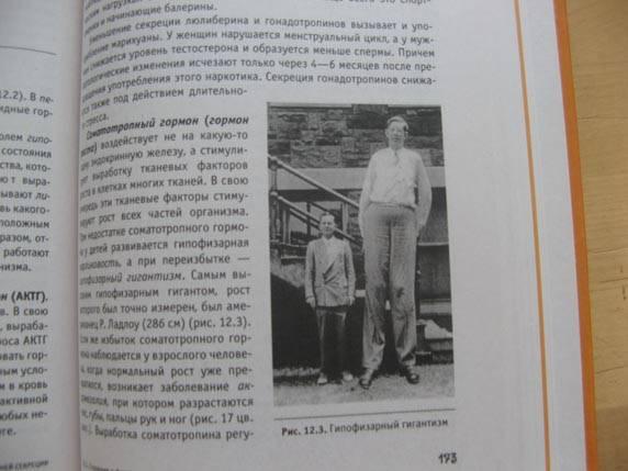 Иллюстрация 1 из 8 для Организм человека: Просто о сложном - Андрей Каменский   Лабиринт - книги. Источник: Болдырева  Мария -