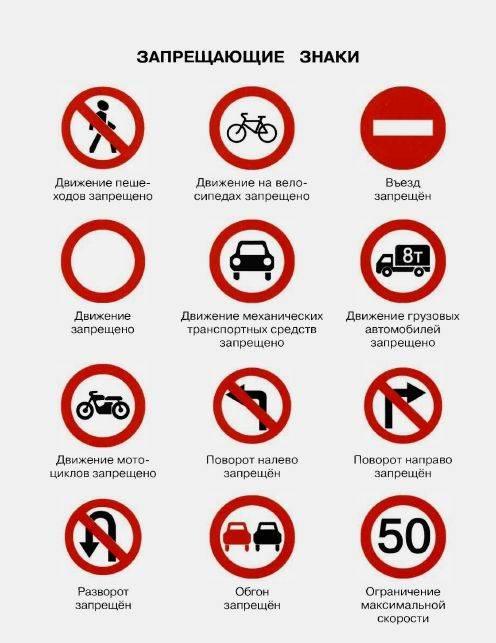Иллюстрация 1 из 26 для Правила безопасного поведения на дороге - Григорий Элькин | Лабиринт - книги. Источник: enotniydrug