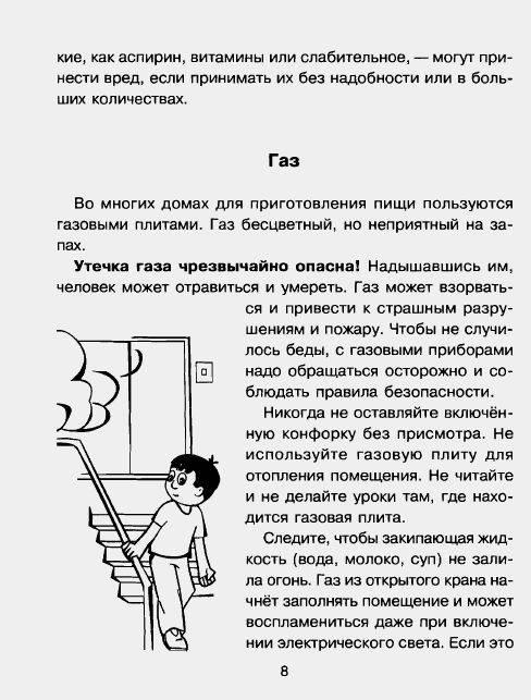 Иллюстрация 1 из 26 для Правила безопасности дома и на улице - Сергей Шинкарчук | Лабиринт - книги. Источник: enotniydrug