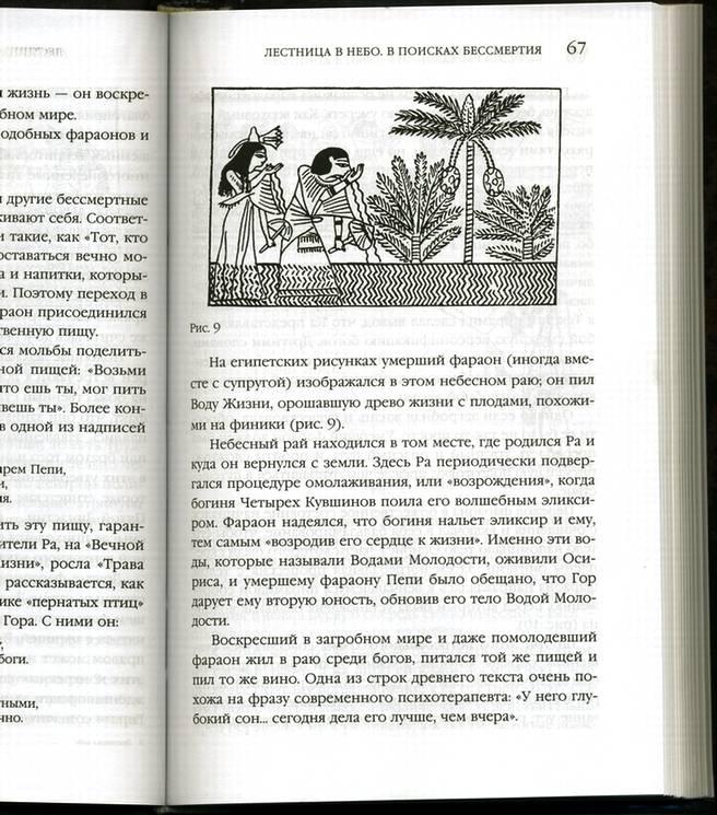 Иллюстрация 1 из 7 для Лестница в небо. В поисках бессмертия - Захария Ситчин   Лабиринт - книги. Источник: * Ольга *