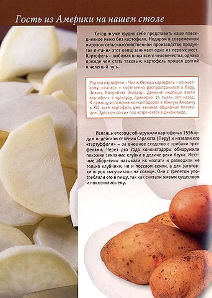 Иллюстрация 1 из 19 для Картофель в натуральном питании - Людмила Потемкина   Лабиринт - книги. Источник: OOlga