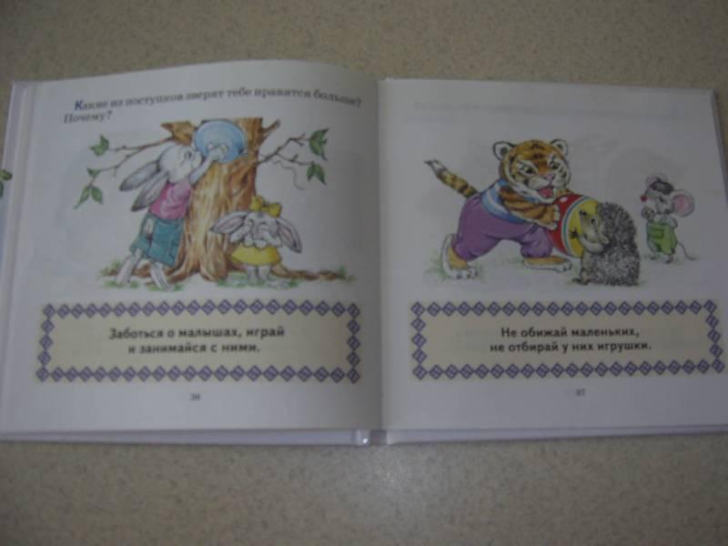 Иллюстрация 23 из 23 для книги правила