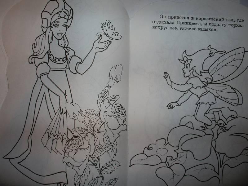 Иллюстрация 1 из 4 для Принцесса и эльф (раскраска) | Лабиринт - книги. Источник: Tiger.