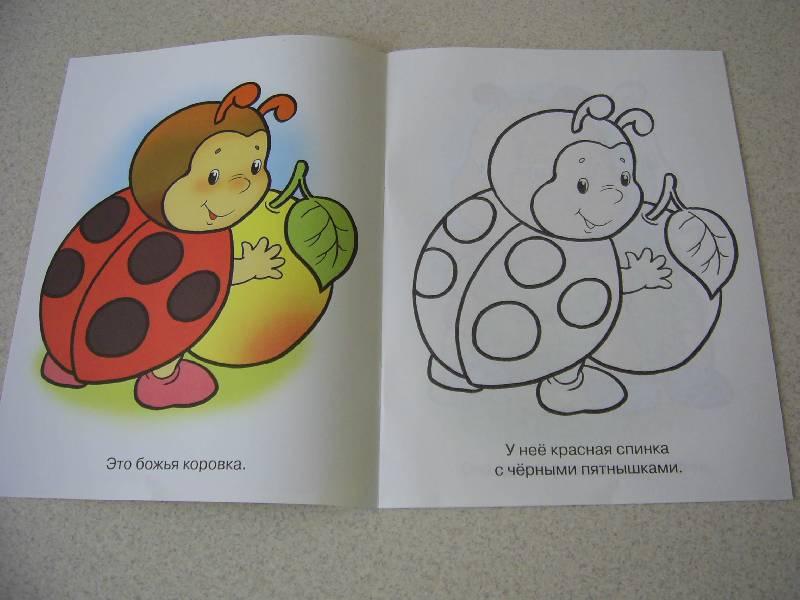 Игра раскраска машинки для малышей