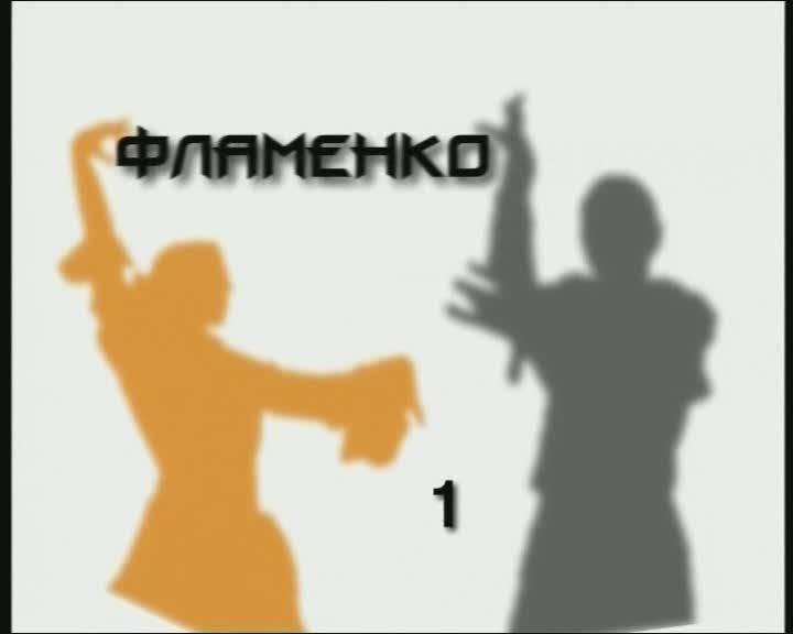 Иллюстрация 1 из 3 для Потанцуем: Фламенко. Часть 1 (DVD) | Лабиринт - видео. Источник: Флинкс