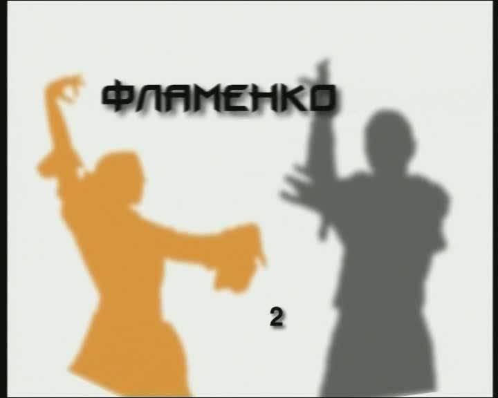 Иллюстрация 1 из 3 для Потанцуем: Фламенко. Часть 2 (DVD) | Лабиринт - видео. Источник: Флинкс