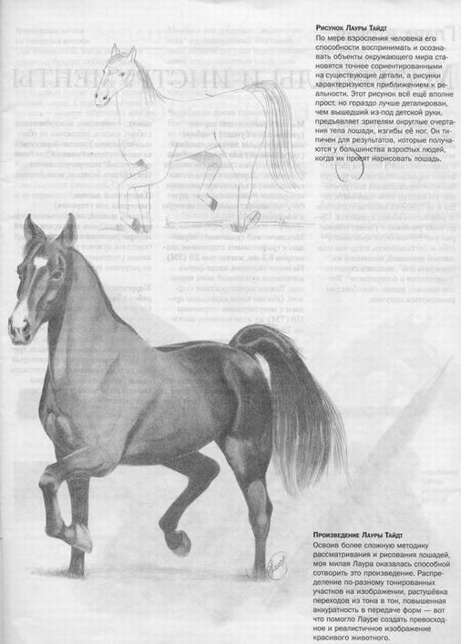 Книга учимся рисовать лошадей вместе с ли хэммонд