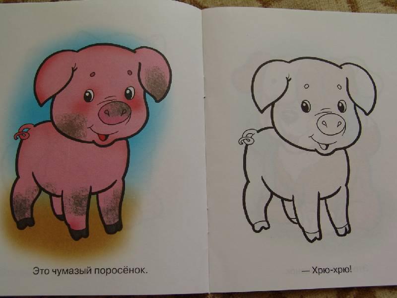 Для малышей домашние животные