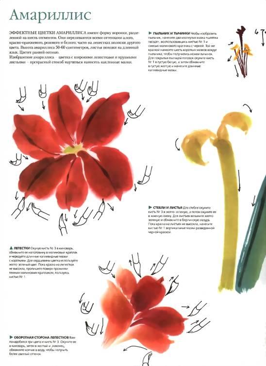 Иллюстрация 1 из 37 для Китайская живопись - Люси Ван | Лабиринт - книги. Источник: * Ольга *