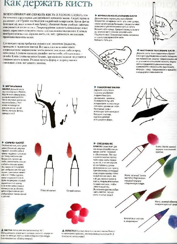 Дэвид Браун Учитесь Рисовать Птиц