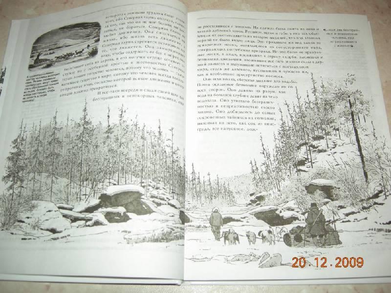 Из 42 для книги белый клык джек лондон