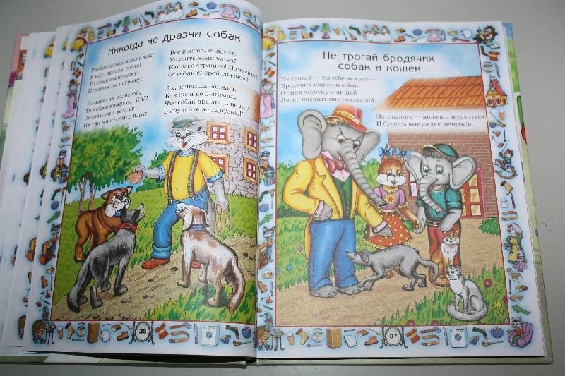 книги шалаевой фото