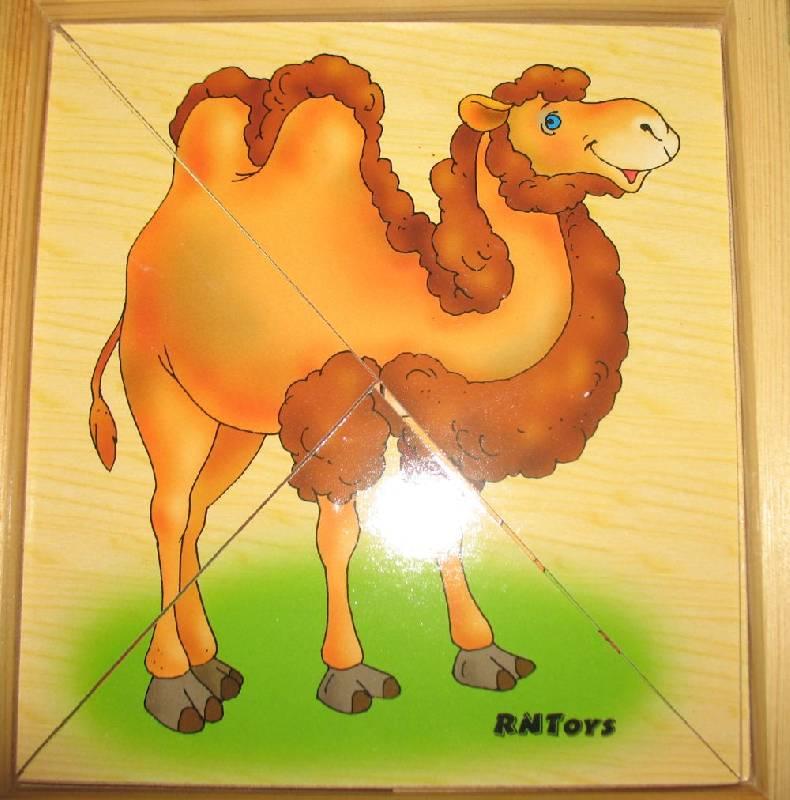 Иллюстрация 1 из 5 для Дикие животные Д-075 | Лабиринт - игрушки. Источник: Operetta