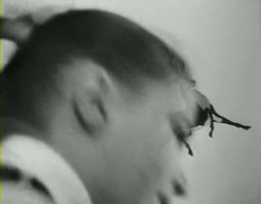 Иллюстрация 1 из 27 для Ох, уж эта Настя! (DVD) - Юрий Победоносцев | Лабиринт - видео. Источник: Флинкс