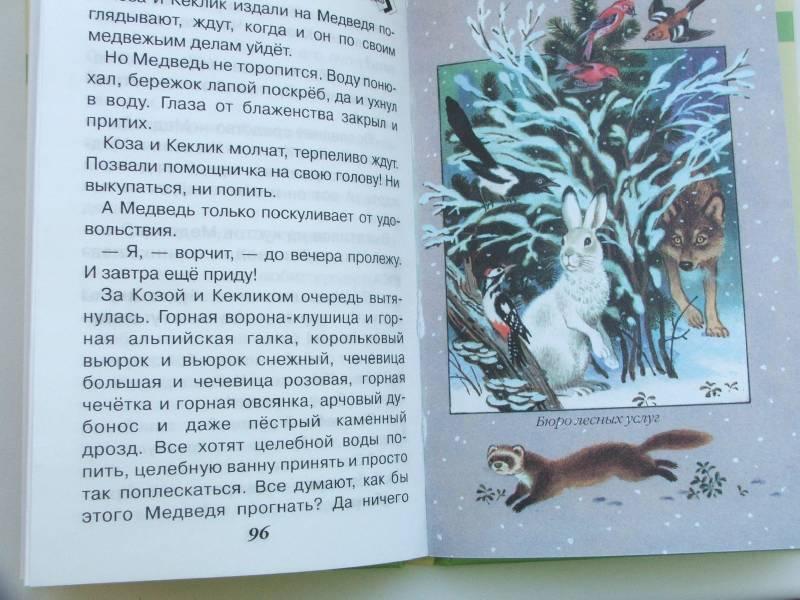 Лесные тайнички (рассказы и сказки) - сладков николай иванович