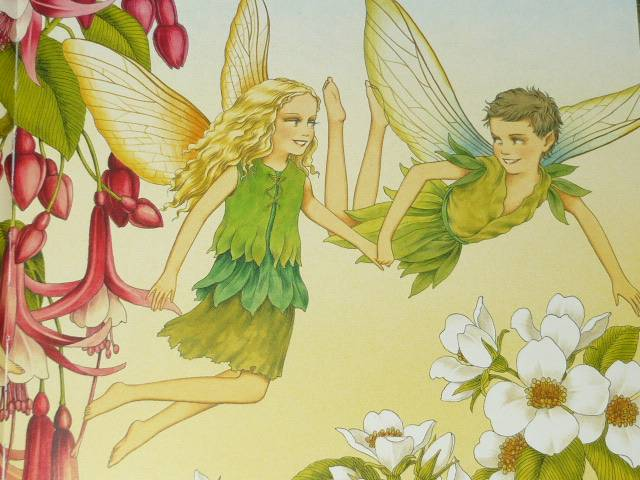 Иллюстрация № 50 к книге