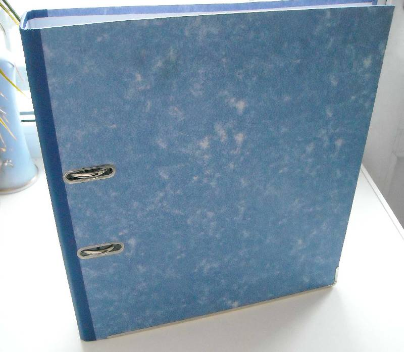 Иллюстрация 1 из 4 для Папка-регистратор А4 50мм (синяя) | Лабиринт - канцтовы. Источник: frolicsome_i