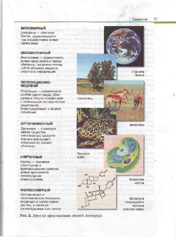 35 для книги биология общая биология