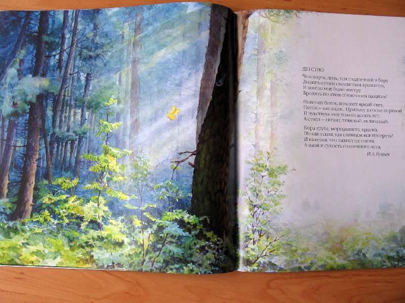 Иллюстрация 10 к книге