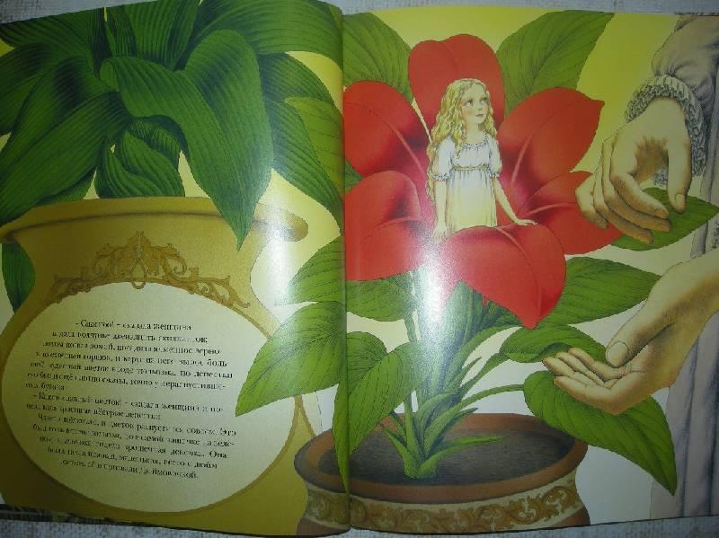 Иллюстрация № 53 к книге
