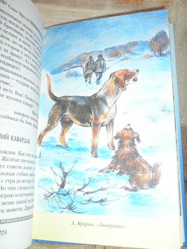 Рисунок к рассказу куприна барбос и жулька