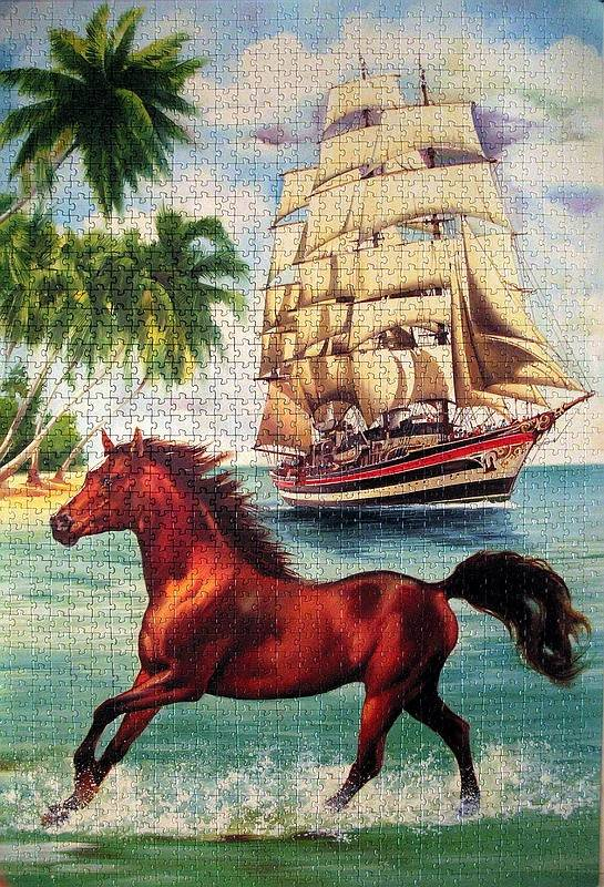 Иллюстрация 1 из 11 для Step Puzzle-1500 83017 Лошадь и парусник   Лабиринт - игрушки. Источник: LilyWhite