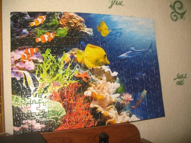 Иллюстрация 1 из 12 для Puzzle-260. Коралловые рифы (В-26630) | Лабиринт - игрушки. Источник: Алена